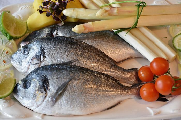 Dorade roher Fisch