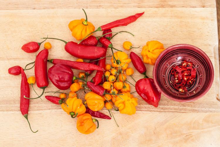 Titelbild: Chilisorten